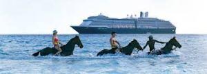 Holland horses
